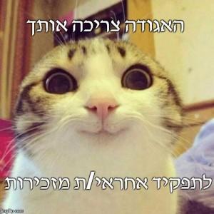חתול-קול-קורא-מזכיר